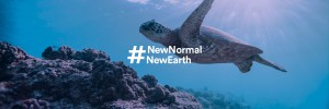 articles-header-newnormalnewearth